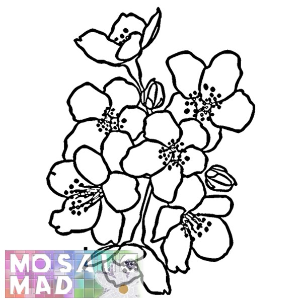 Flower CHERRY BLOSSOM Pattern